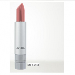 aveda_nourish_mint_smoothing_lip_color_510_fossil.png