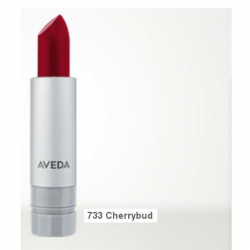 aveda_nourish_mint_smoothing_lip_color_733_cherrybud.png