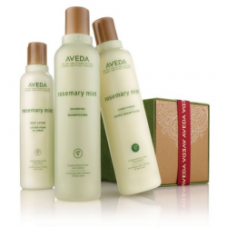 aveda_rosemary_mint_refresh_mint.png